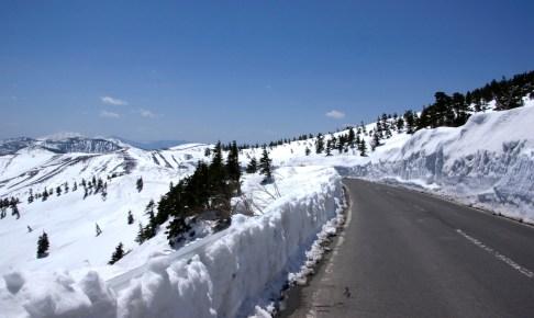 志賀草津高原ルート開通/雪の回廊