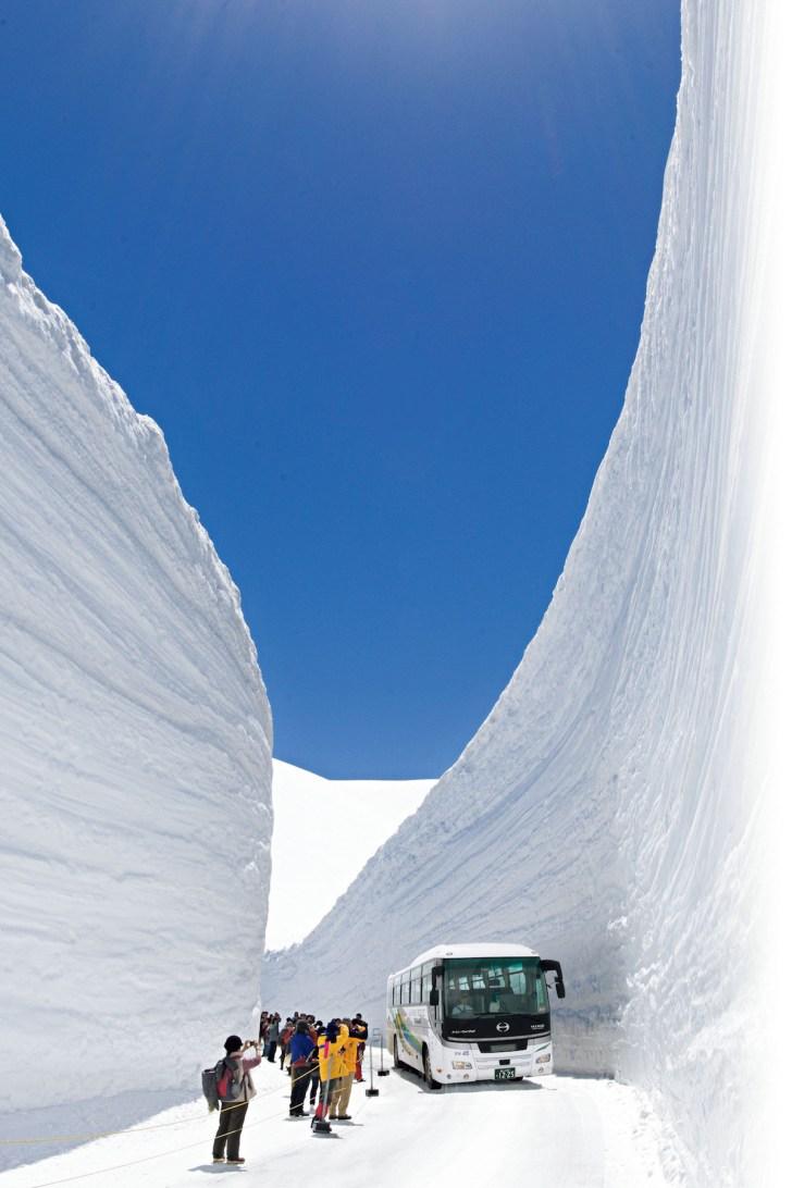 立山黒部アルペンルート開通/雪の大谷(雪の回廊)