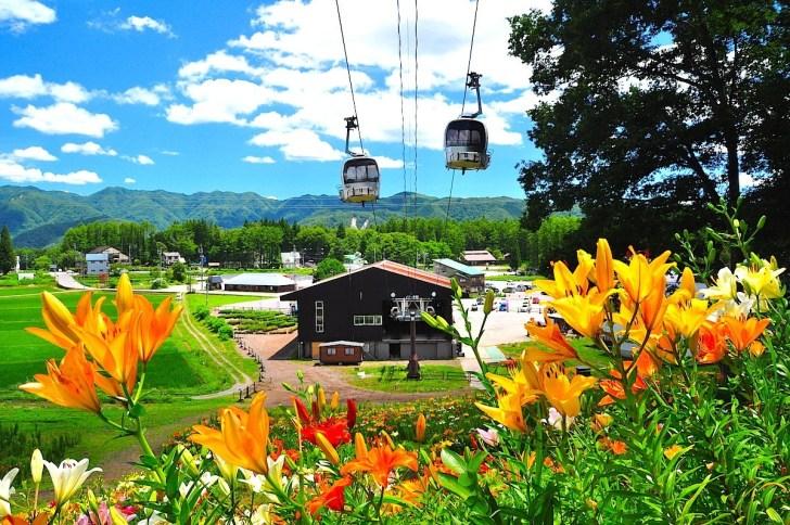 岩岳ゴンドラリフト「ノア」山麓駅と山麓ゆり園