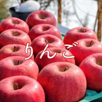 りんご|りんご通販|長野|減農薬|蜜入り