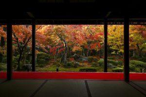 圓光寺 画像