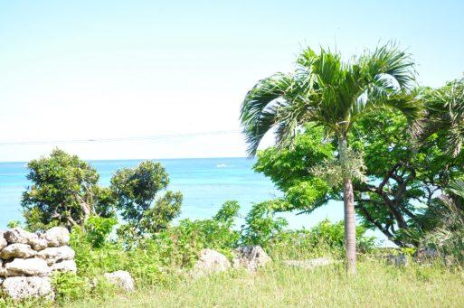 ペンション最南端の庭から見るニシ浜