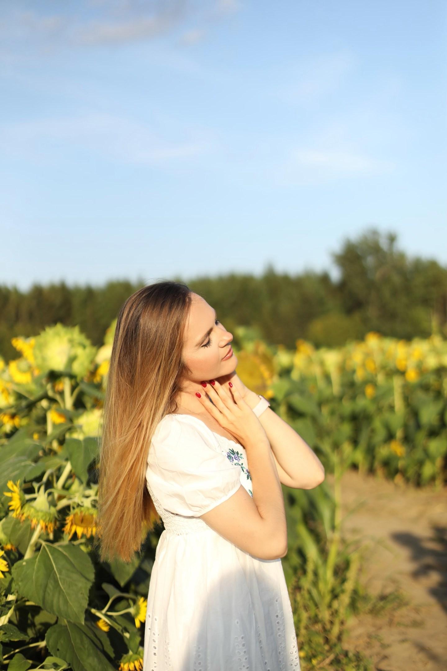 Summer Trip To Sunflower Field