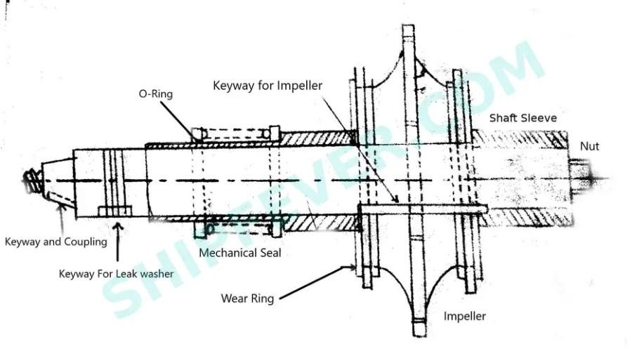 Simple feed pump shaft diagram