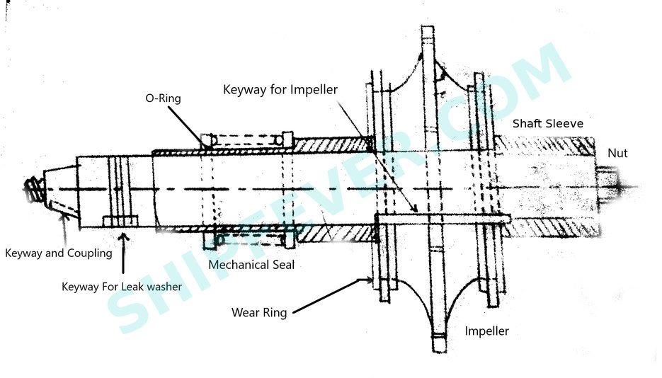 Simple feed pump shaft diagram