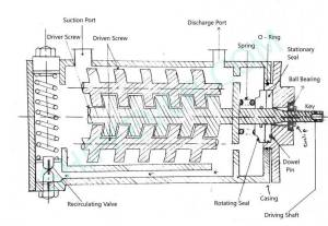 Screw Pump – Their Parts, Working And Function