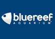 Bluereef Aquarium Hastings