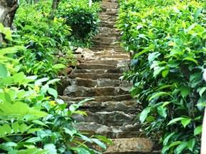 Spiritual Growth in Judaism