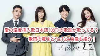 愛の温度 挿入歌 日本語 OSTの歌誰が歌ってる 歌詞 意味 YouTube