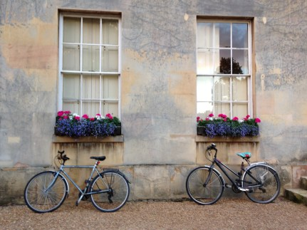 Bikes parked at Downing