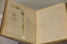 Exhibited Sketchbook