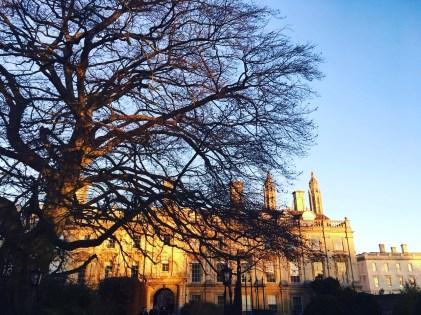 Clare College at sundown