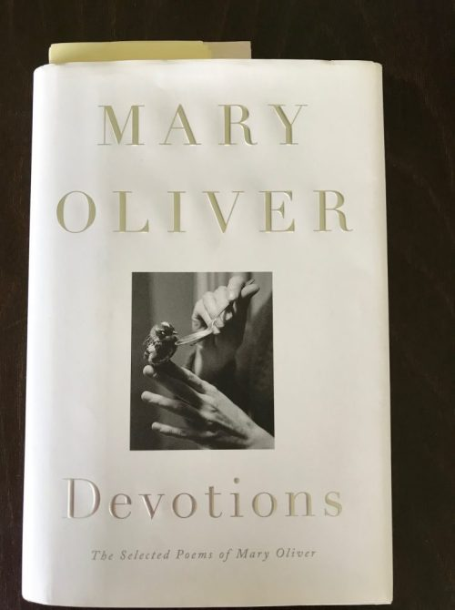 Mary Oliver, Devotions