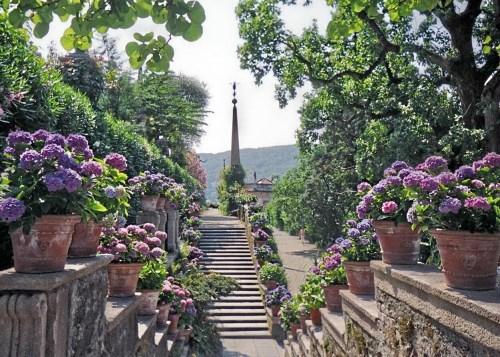 Isola Bella in Lake Maggiore, Italy Copyright Shirley Sorbello 2006
