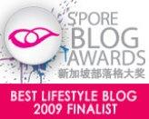 Best Lifestyle Blog 2009 Finalist