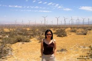 沿途去Joshua Tree国家公园时可见到美国最大的风车发电厂之一 (Palm Spirng Windmills, California, USA)