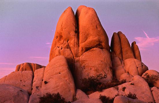Sunset in Joshua Tree National Park, California, USA