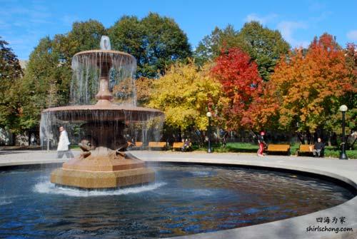 在加拿大渥太华看红枫叶 (Confederation Park, Ottawa)