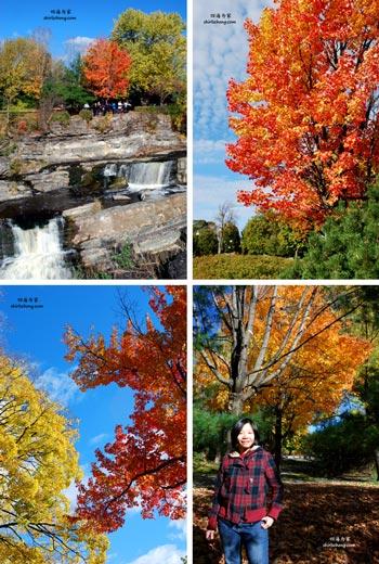 去渥太华赏枫叶 (Autumn in Ottawa, Canada)
