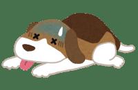 愛犬が風邪(かぜ)をひいたかも、その症状と原因とは?
