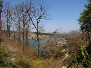 泉ボタニカルガーデン、七北ダムが見える