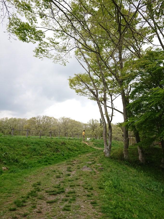 南ケ丘牧場 散歩