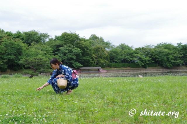 草原と池と浴衣女子