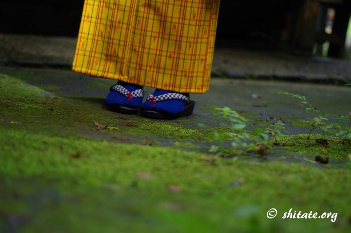 着物コーディネート・草履と足袋