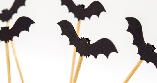 Bats flying with sticks