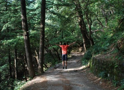 man jumping while taking a walk in dharamkot