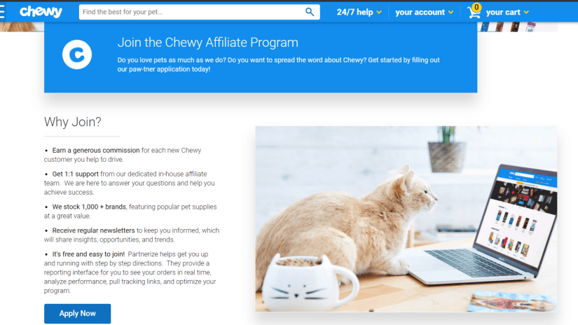 Best Cat Affiliate Programs: Chewy