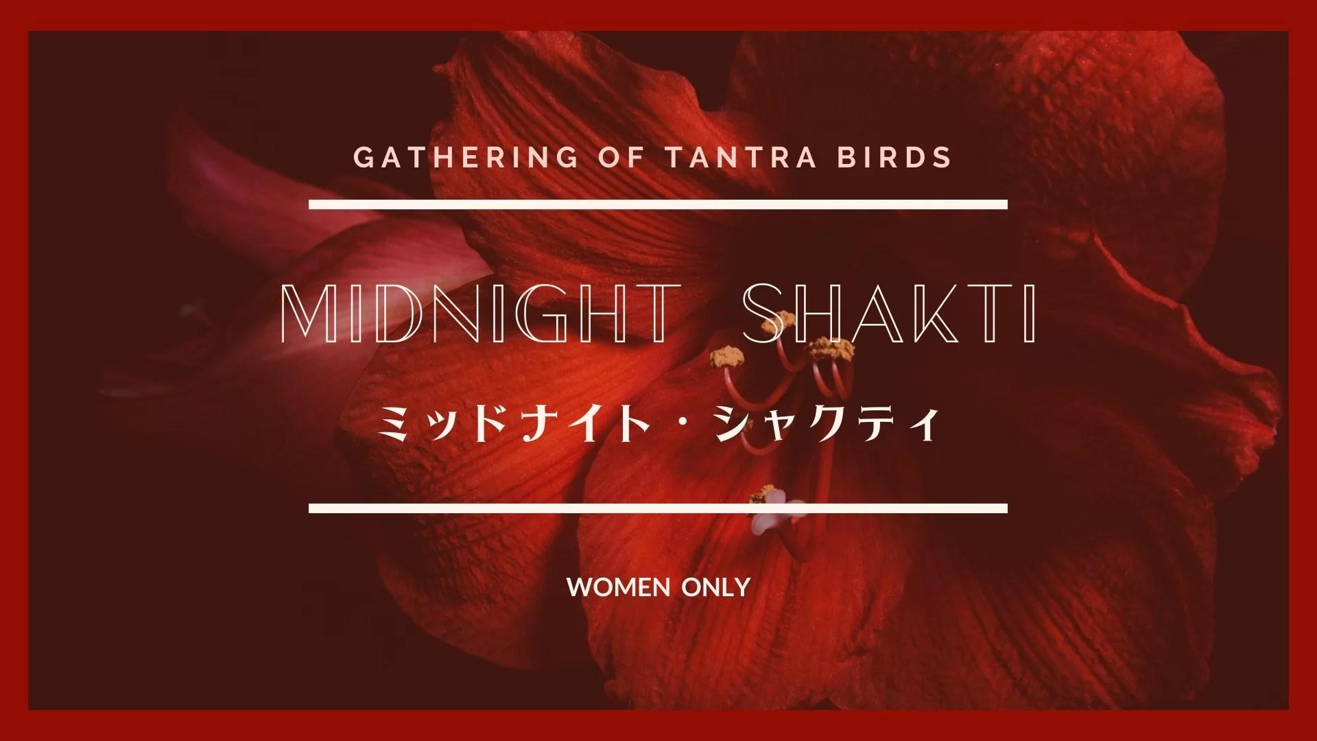 11月15日(日)新月の夜20時から2ヶ月ぶりにミッドナイト・シャクティ開催します