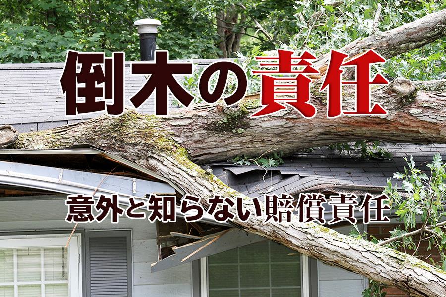 倒木で隣家に傷つけたときの責任は?意外と知らない賠償責任の話!