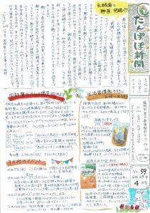 たんぽぽH29.4