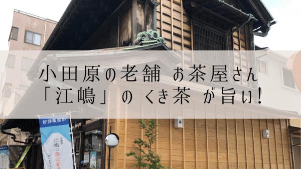 小田原「江嶋」のくき茶が旨い。小田原に行ったら老舗のお茶屋さんへ!