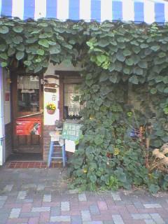cafe-scene1.jpg