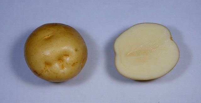 danshaku-potato