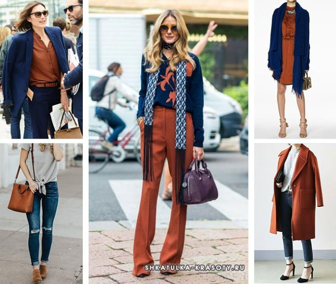combination of brown and dark blue