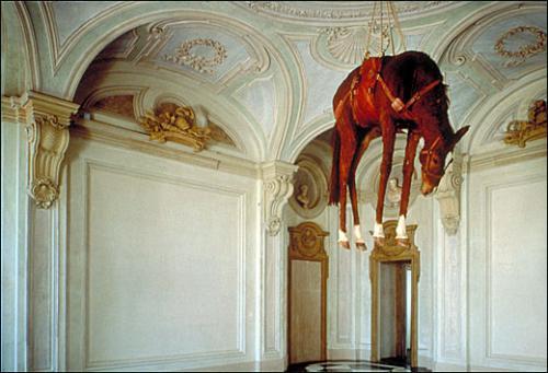 cheval-mort-suspendu-2
