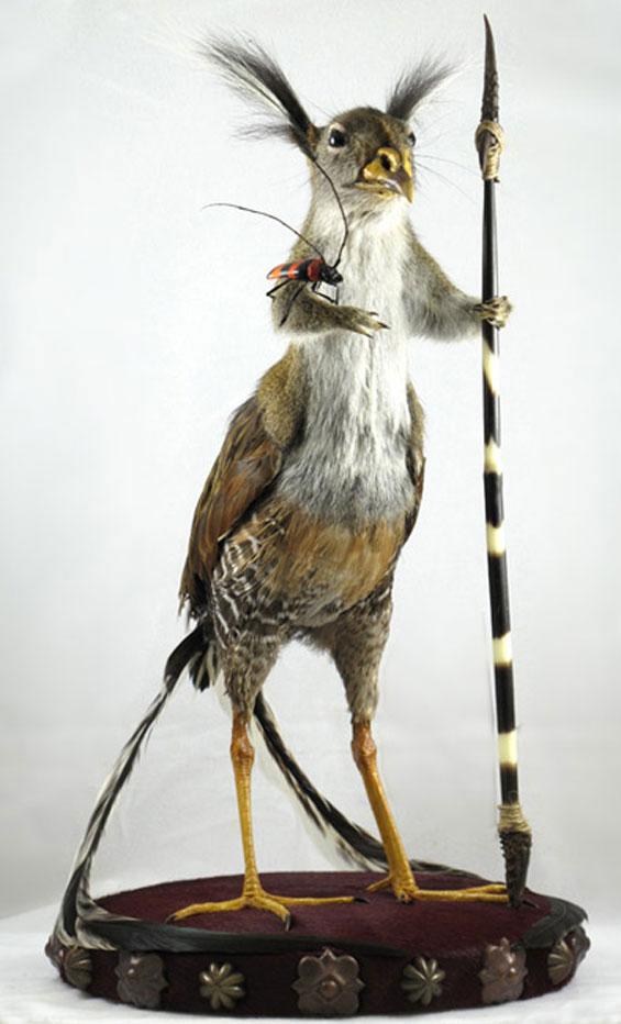 gomez-de-molina-animaux-empailles-morts-taxidermie-croisement-6