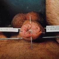 David Nebreda : Vaincre le mâle par le mal