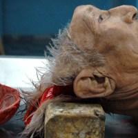 Ernesto Muñiz : Rigor Mortis
