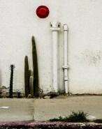 Diane Cockerill. Santa Fe Art Colony