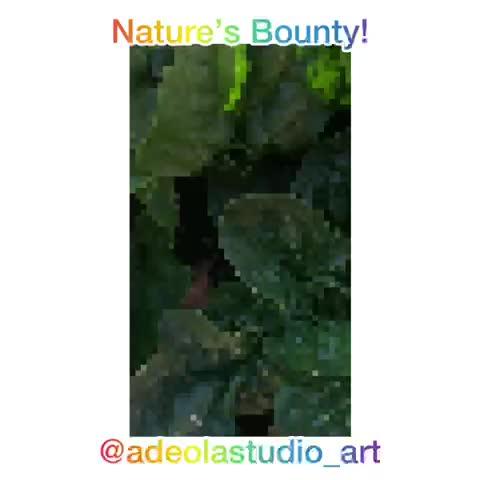 1-adeola-davies-aiyeloja-nature_s-bounty-mov