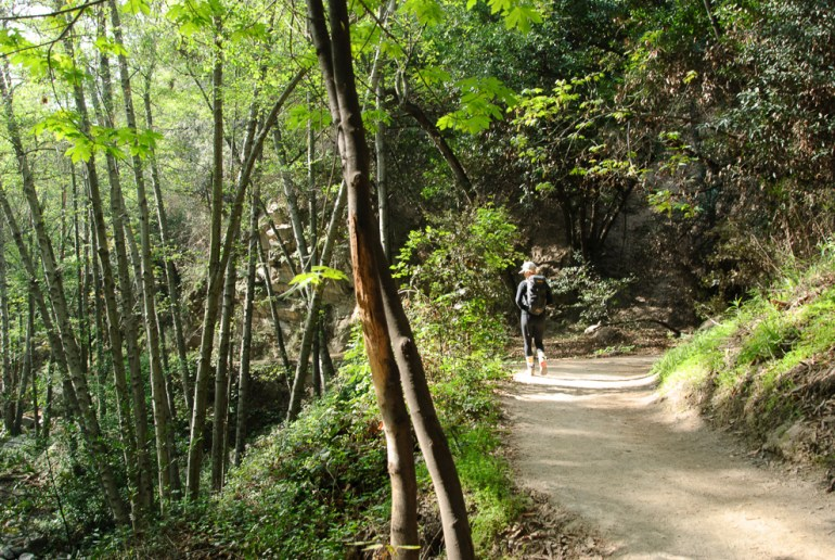Chantry Flats Hiking Trails Map on