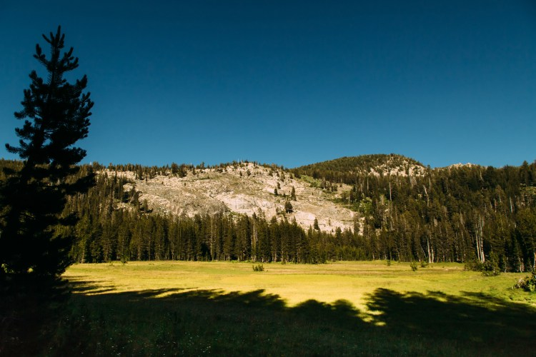 SHOESTRING_YOSEMITE_082016_by_JustinSullivan-28