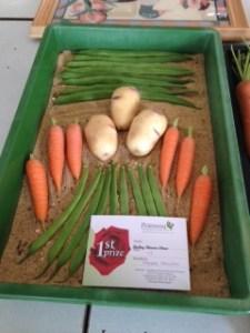 Village show veg
