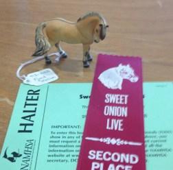Sweet Onion Live 2014