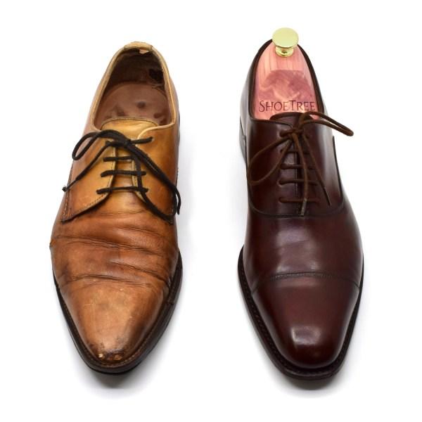 shoe tree in shoe