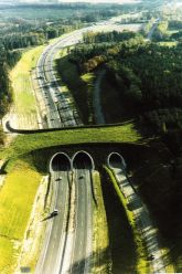 bridges-for-animals-around-the-world-40-58a568be69c64-jpeg__880